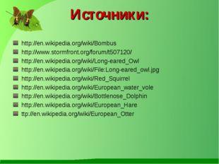 Источники: http://en.wikipedia.org/wiki/Bombus http://www.stormfront.org/foru