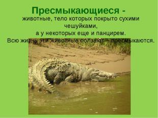Пресмыкающиеся - животные, тело которых покрыто сухими чешуйками, а у некотор