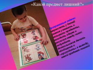 Программные задачи: закреплять у детей умение узнавать и называть предметы, н