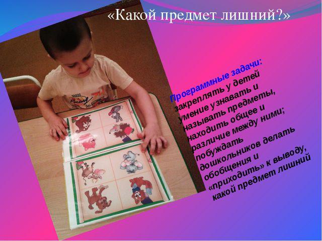 Программные задачи: закреплять у детей умение узнавать и называть предметы, н...