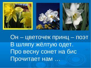 Он – цветочек принц – поэт В шляпу жёлтую одет. Про весну сонет на бис Прочит