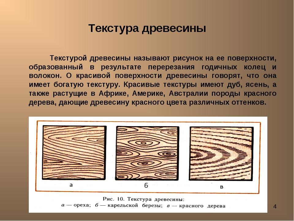 Лешуков Сергей Иванович * Текстура древесины Текстурой древесины называют рис...