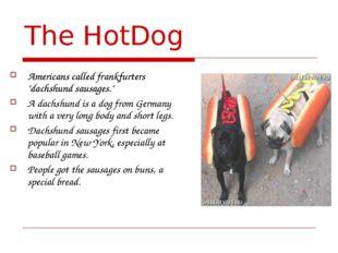 "The HotDog Americans called frankfurters ""dachshund sausages."" A dachshund is"