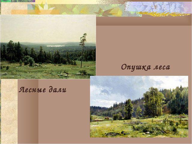 Лесные дали Опушка леса