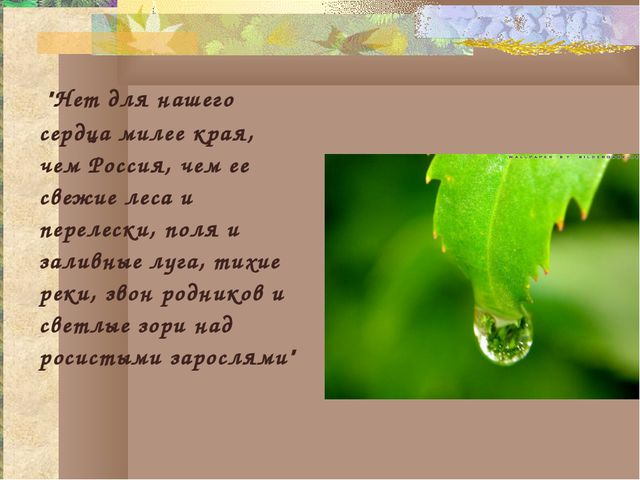"""""""Нет для нашего сердца милее края, чем Россия, чем ее свежие леса и перелеск..."""