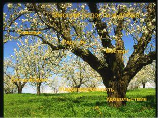 Эмоции радости и добра Счастье Радость Восторг Спокойствие Умиротворённость У