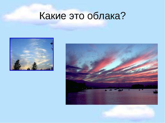 Какие это облака?