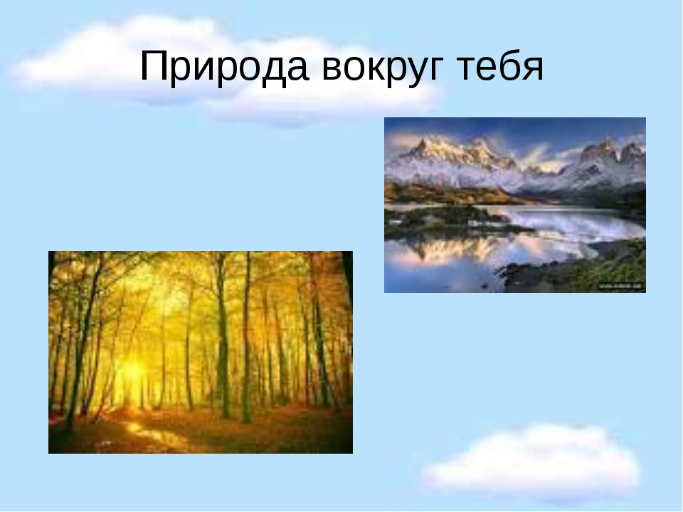Природа вокруг тебя