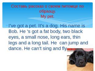 I've got a pet. It's a dog. His name is Bob. He 's got a fat body, two black