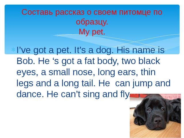 I've got a pet. It's a dog. His name is Bob. He 's got a fat body, two black...