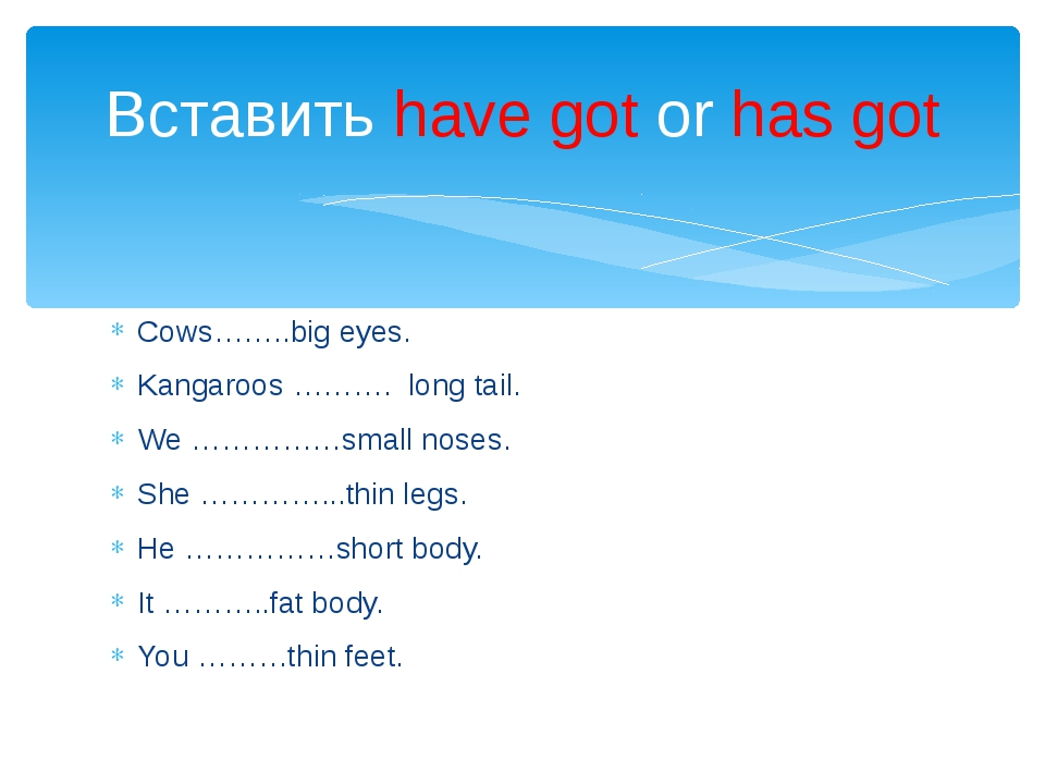Cows……..big eyes. Kangaroos ………. long tail. We ……………small noses. She …………...t...