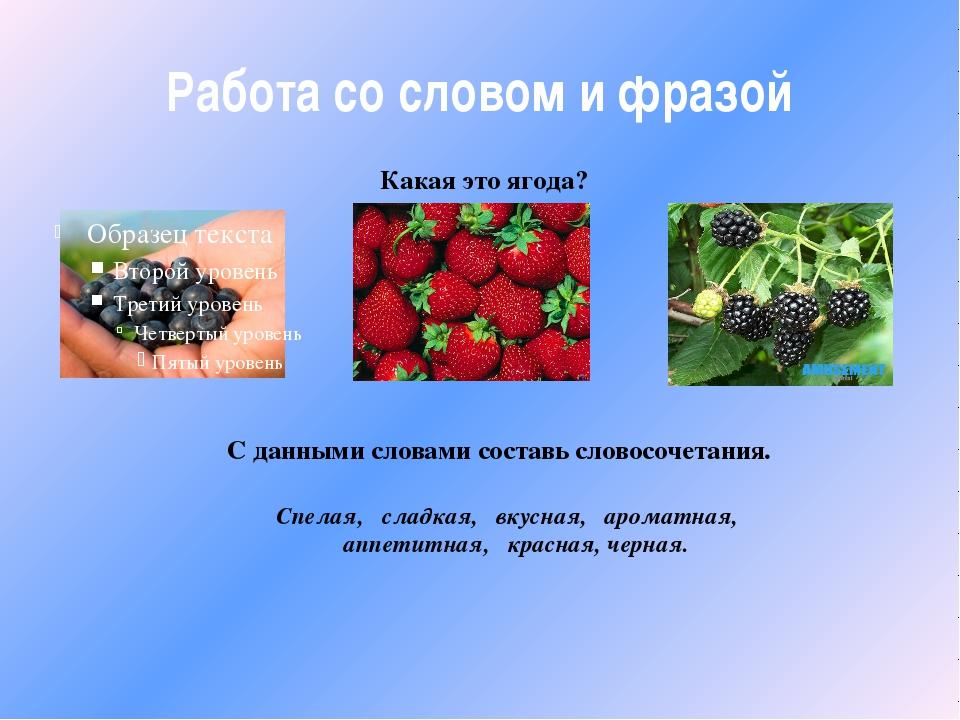 Работа со словом и фразой Какая это ягода? С данными словами составь словосоч...