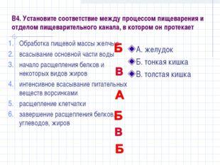 В4. Установите соответствие между процессом пищеварения и отделом пищеварител