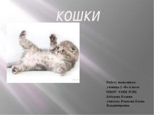кошки Работу выполнила: ученица 2 «Б» класса МБОУ СОШ №182 Лебедева Ксения уч
