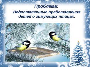 Проблема: Недостаточные представления детей о зимующих птицах.
