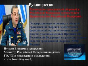 Руководство Руководство гражданской обороной в Российской Федерации осуществл