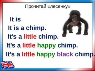 Прочитай «лесенку» It's a little happy chimp. It's a little chimp. It's a lit