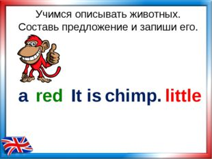 Учимся описывать животных. Составь предложение и запиши его. chimp. little re