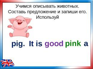Учимся описывать животных. Составь предложение и запиши его. Используй pig. g