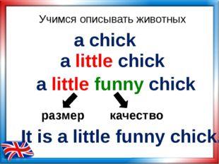 Учимся описывать животных a chick a little chick a little funny chick размер