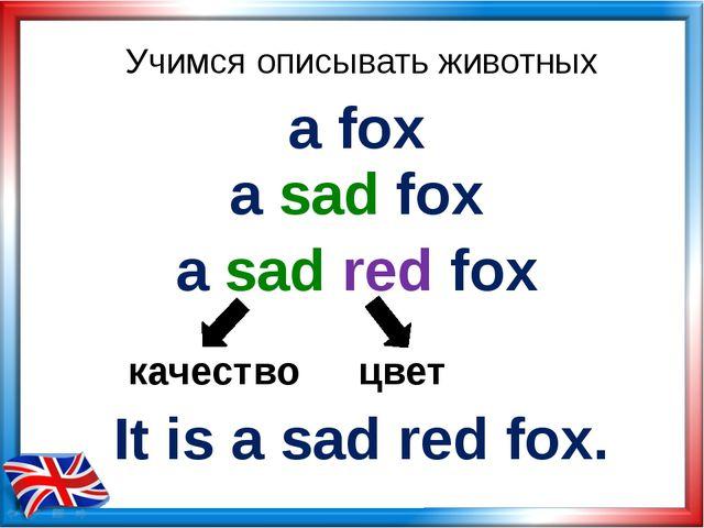 Учимся описывать животных a fox a sad fox a sad red fox качество цвет It is a...