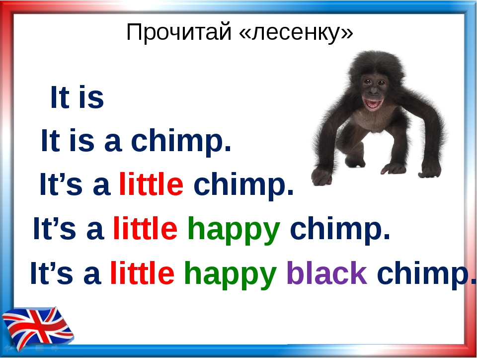 Прочитай «лесенку» It's a little happy chimp. It's a little chimp. It's a lit...