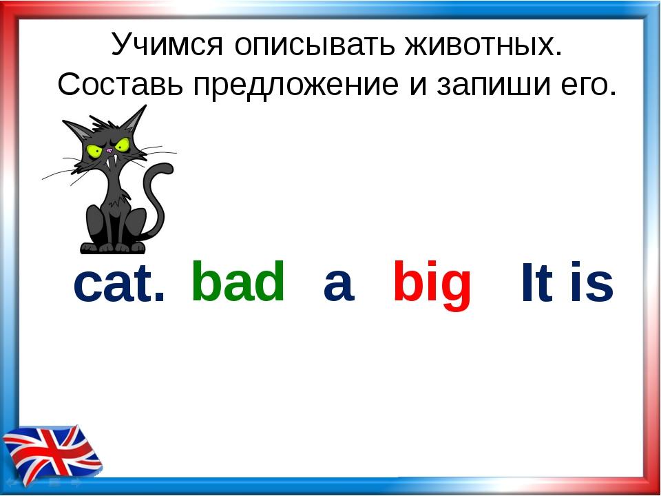 Учимся описывать животных. Составь предложение и запиши его. cat. big bad It...