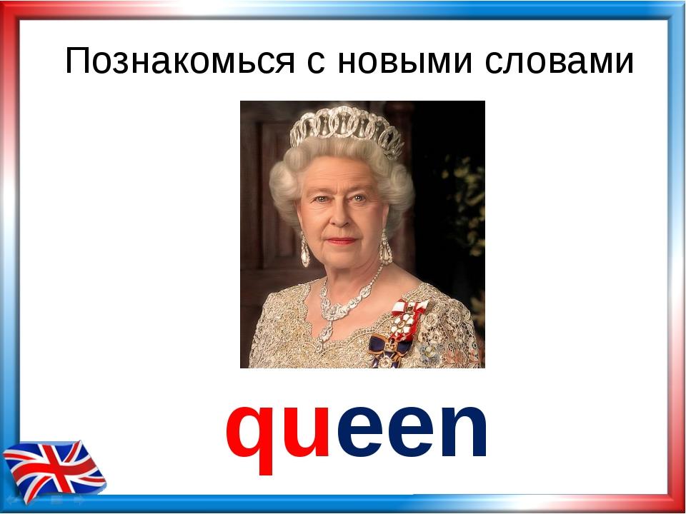 Познакомься с новыми словами queen