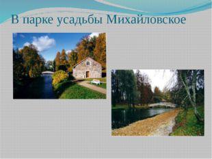 В парке усадьбы Михайловское