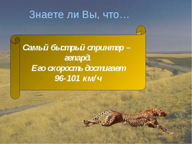 Знаете ли Вы, что… Самый быстрый спринтер – гепард. Его скорость достигает 96...