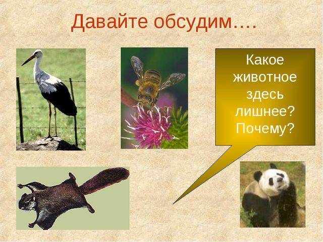 Давайте обсудим…. Какое животное здесь лишнее? Почему?