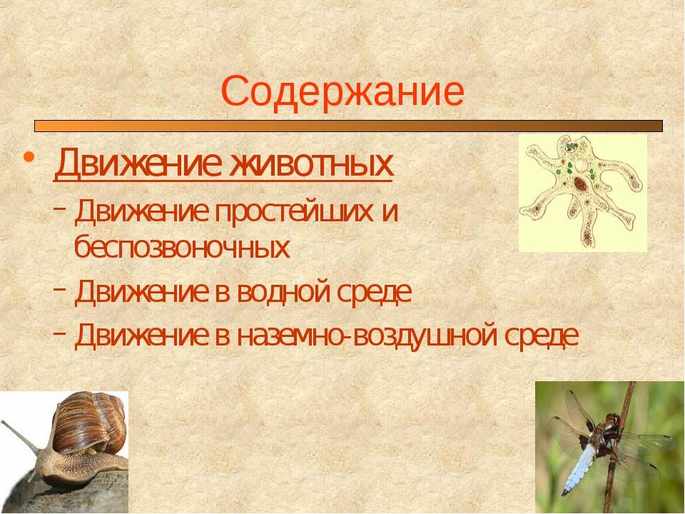 Содержание Движение животных Движение простейших и беспозвоночных Движение в...