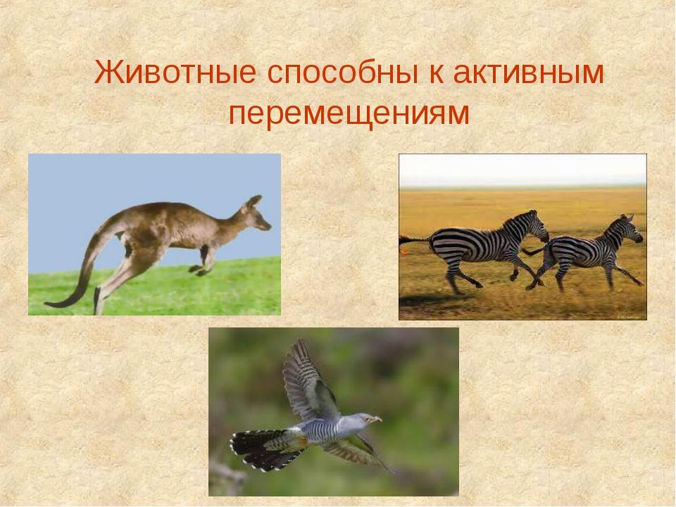 Животные способны к активным перемещениям