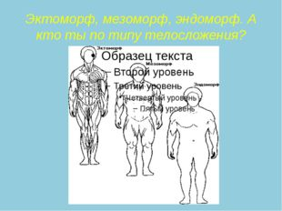 Эктоморф, мезоморф, эндоморф. А кто ты по типу телосложения?