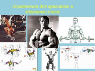 Упражнения для красивого и здорового тела: