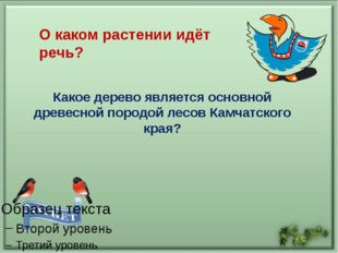 Интернет-ресурсы: https://www.yandex.ru -картинки http://neposed.net - загадк