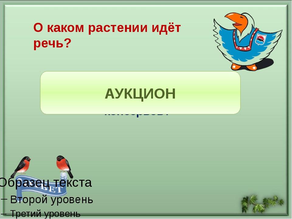 Белокрылая птица Над морем летает, Рыбу увидит – Клювом хватает. Что это за п...