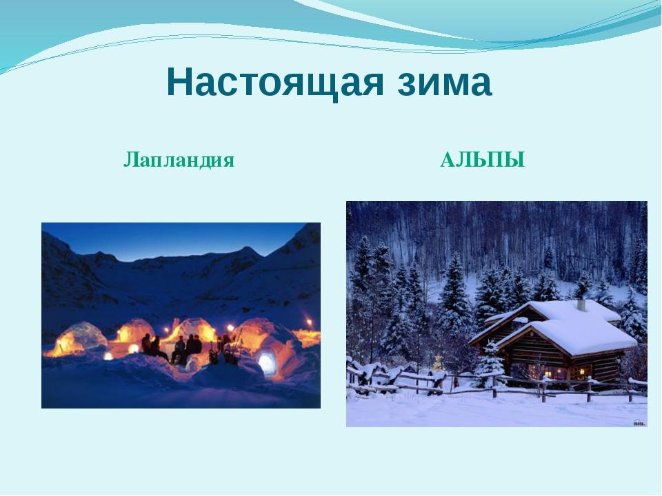 Настоящая зима Лапландия АЛЬПЫ
