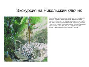 Экскурсия на Никольский ключик В красивейшем месте на правом берегу реки Ваги