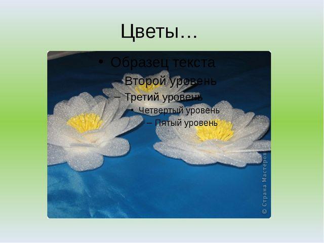 Цветы…