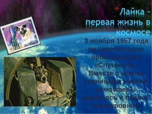 3 ноября 1957 года на околоземную орбиту вышел «Спутник-2». Вместе с ним за