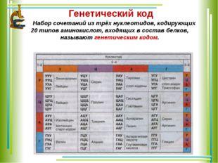 Генетический код Набор сочетаний из трёх нуклеотидов, кодирующих 20 типов ам