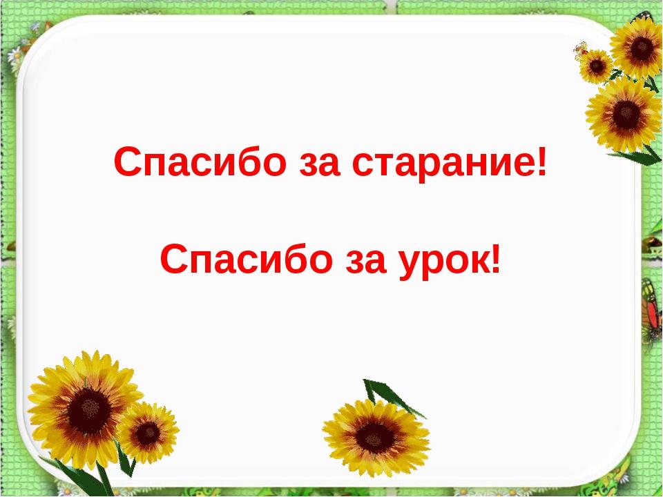 Спасибо за старание! Спасибо за урок!