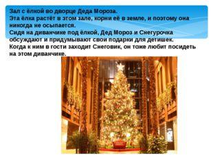 Зал с ёлкой во дворце Деда Мороза. Эта ёлка растёт в этом зале, корни её в з