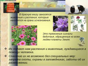 Их подают нам растения и животные, нуждающиеся в помощи человека. Спасение их