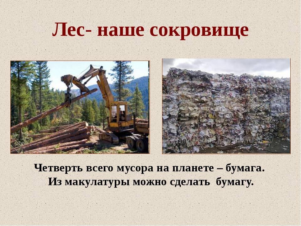 Лес- наше сокровище Четверть всего мусора на планете – бумага. Из макулатуры...
