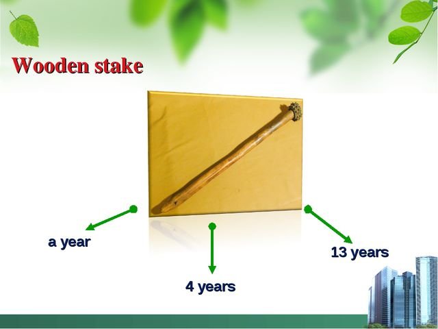 Wooden stake a year 4 years 13 years