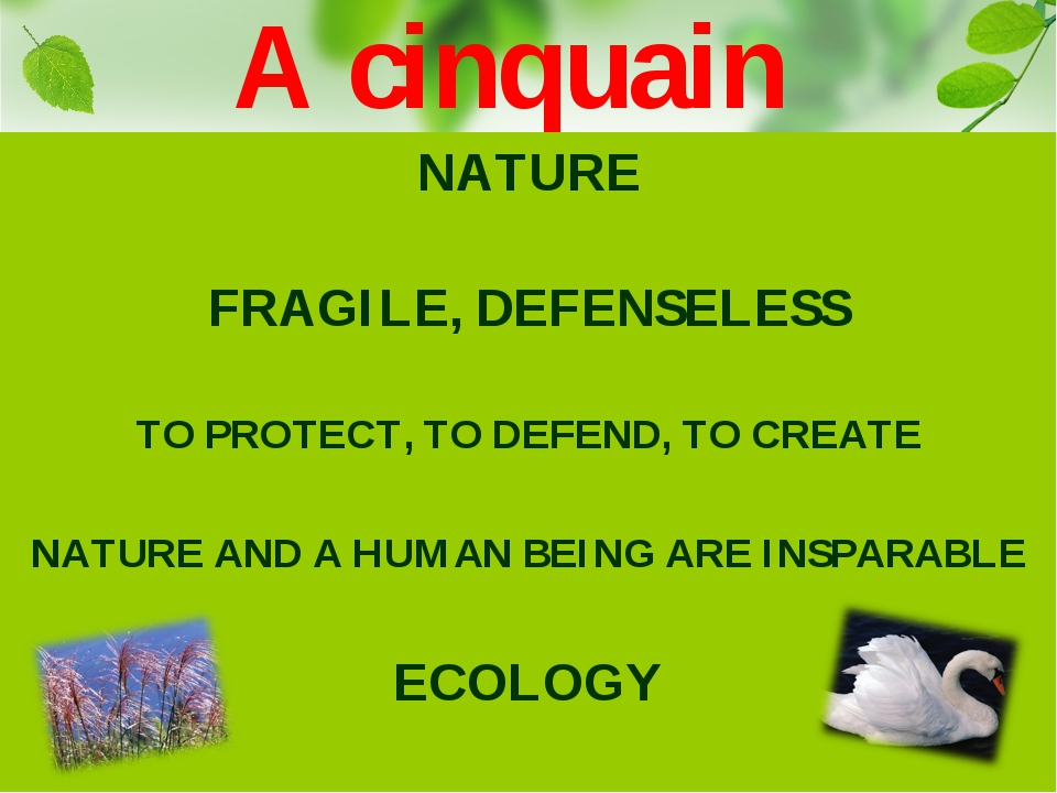 NATURE FRAGILE, DEFENSELESS TO PROTECT, TO DEFEND, TO CREATE NATURE AND A HUM...
