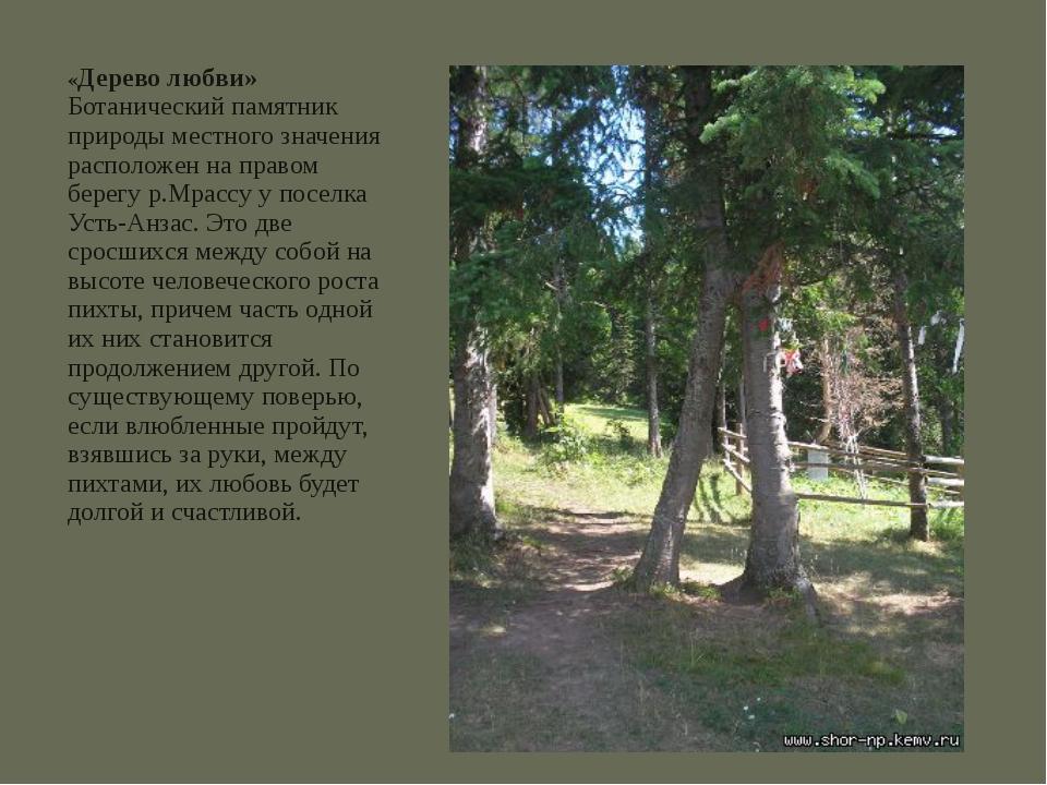 «Дерево любви» Ботанический памятник природы местного значения расположен на...