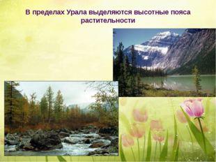 В пределах Урала выделяются высотные пояса растительности